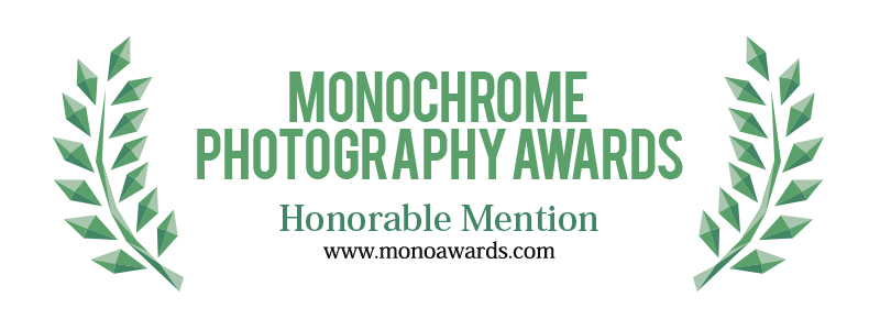 8 x Awarded Honorable Mention 2019