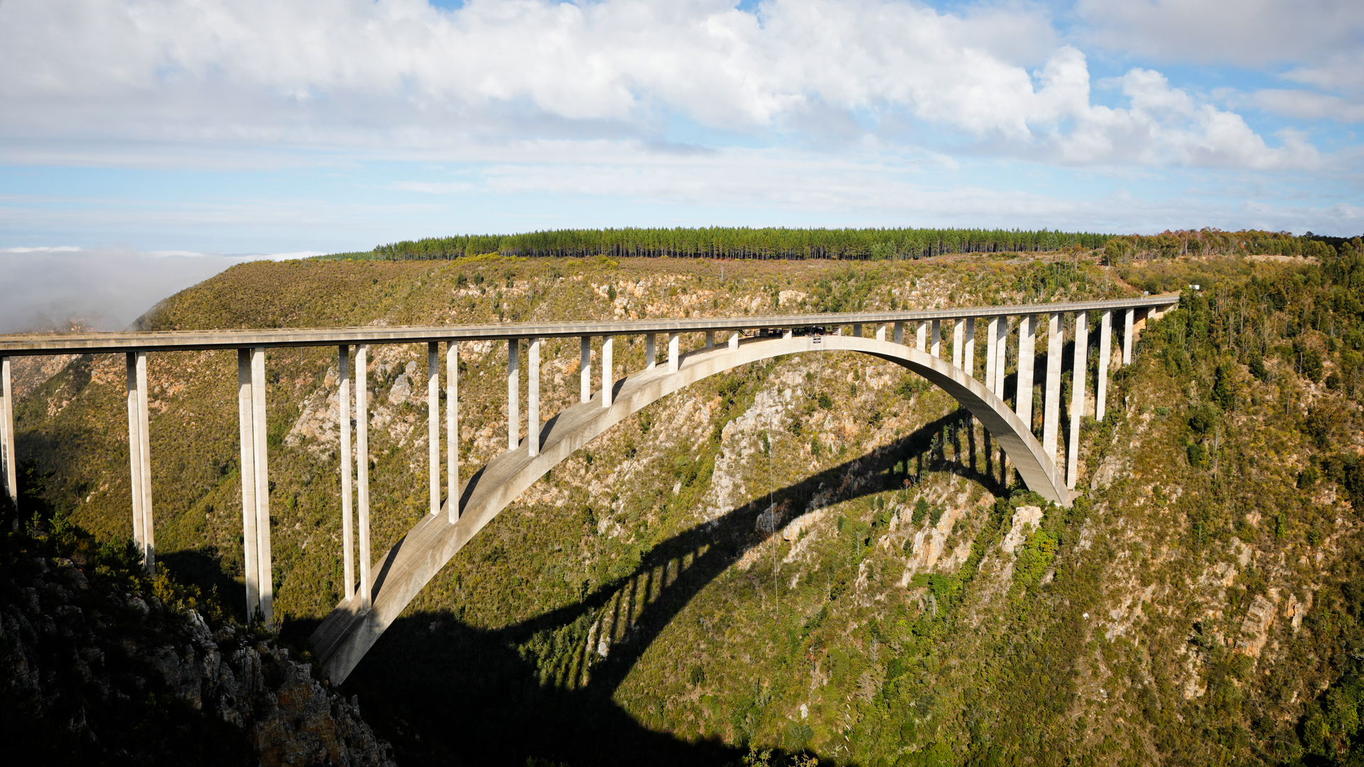 Bloukrans Bungy Bridge